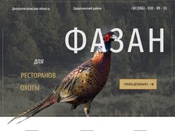 Сайт по продаже фазанов