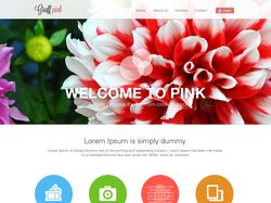 Graff pink