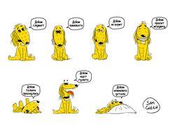 Собака Дейзи и её эмоции
