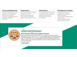 Проект expertus96.ru