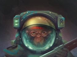 Сrazy monkey Space pirate