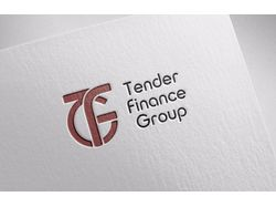 Tender Finance-Group
