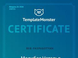 Сертифицированный специалист CMS WordPress