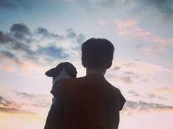 Закат, пёс и человек.