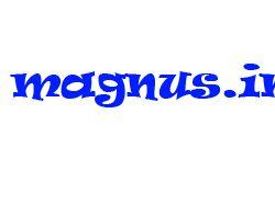 Клининговая компания Магнус