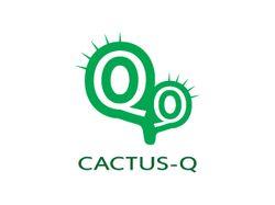кактус q