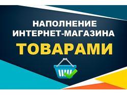 Наполнение интернет-магазинов товарами