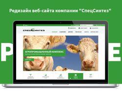 """Редизайн веб-сайта компании """"СпецСинтез"""""""