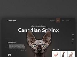 Дизайн первого экрана сайта