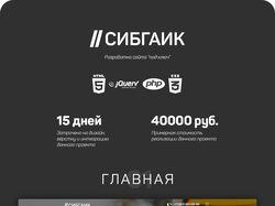 Сайт под ключ для компании Сибгаик