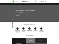 Создание прототипа страниц большого сайта