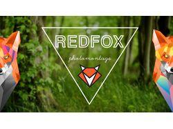 Мой личный логотип REDFOX