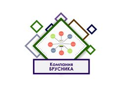 Видео инструкция по приложению компании Brusnika