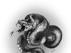 Змейс