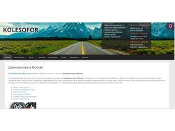 Наполнение интернет-магазина - WordPress CMS
