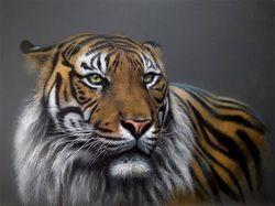 Рисование маслом. Тигр.