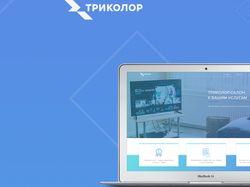 UX&UI Триколор салон