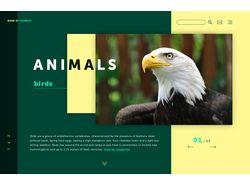Сайт о животных