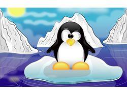 Пингви