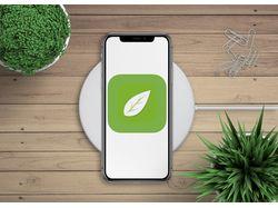 Мобильное приложение ios Акуловка