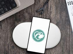 Мобильное приложение Android Здравица