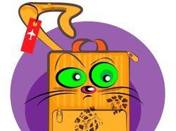 Кот чемодан