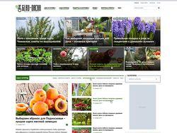 Информационный сайт на Вордпрессе