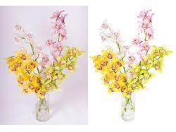 Обтравка (удаление фона) и ретушь цветов