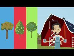 Анимационные видео под ключ для компании Агротрейс