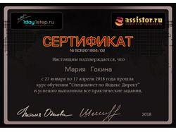 Сертификат обучения Яндекс Директ