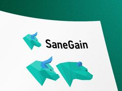 "Логотип ""SaneGain"" мониторинг хайп проектов"