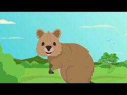 Анимационное видео для компании Гектар