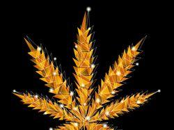 Оттенки марихуаны :)