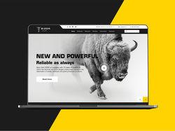 Bizon Tech - Landing Page