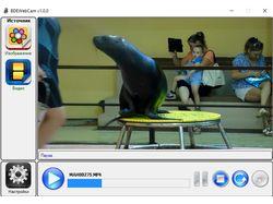 BDEsoft Webcam. Виртуальная веб-камера с драйвером