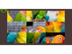Cute Pets Puzzle
