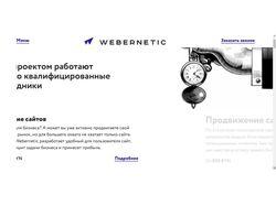 Тестирование сайта Webernetic