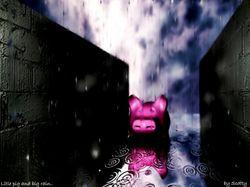 Свинка под дождем