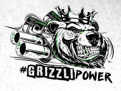 grizlyPower