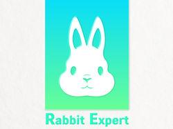Rabbit Expert