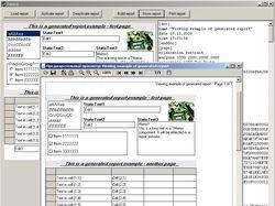Delphi Form2Report (генерация отчетов)