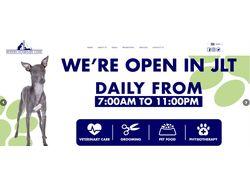 Продвижение сайта Ветеринарной клиники в ОАЭ