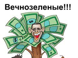 Вечно зеленое дерево Барака Обамы