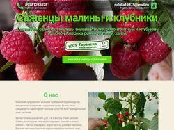 Лендинг seedberrys