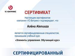 Сертификат 1С Битрикс - «Элементы управления»