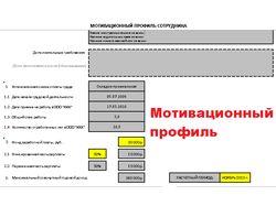Мотивационные профили и должностные инструкции