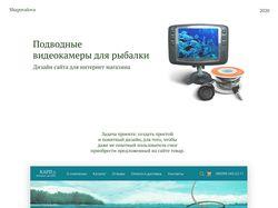 Камеры для подводной рыбалки
