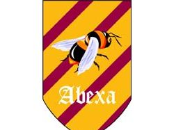 Эмблема футбольного клуба Абеха