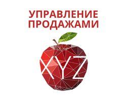 Управление продаж XYZ