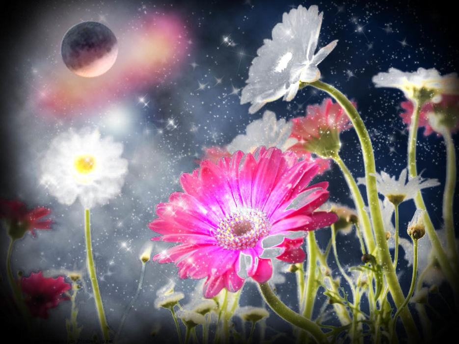 Цветок сказочный